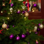 <b> Und wieder erstrahlt ein schöner Tannenbaum im Schul-Foyer </b>